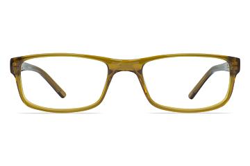 Animal ANIS002 Ashton Gold Glasses